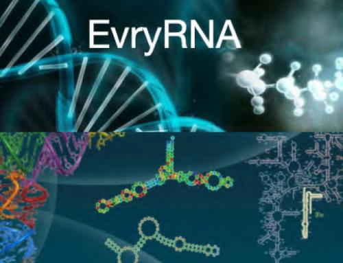 Le Genopole met à l'honneur la plate-forme EvryRNA !
